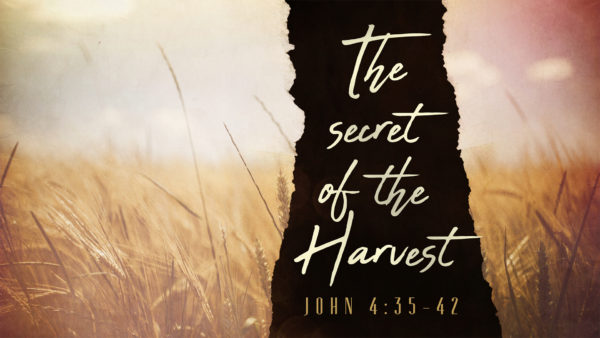 The Secret of the Harvest